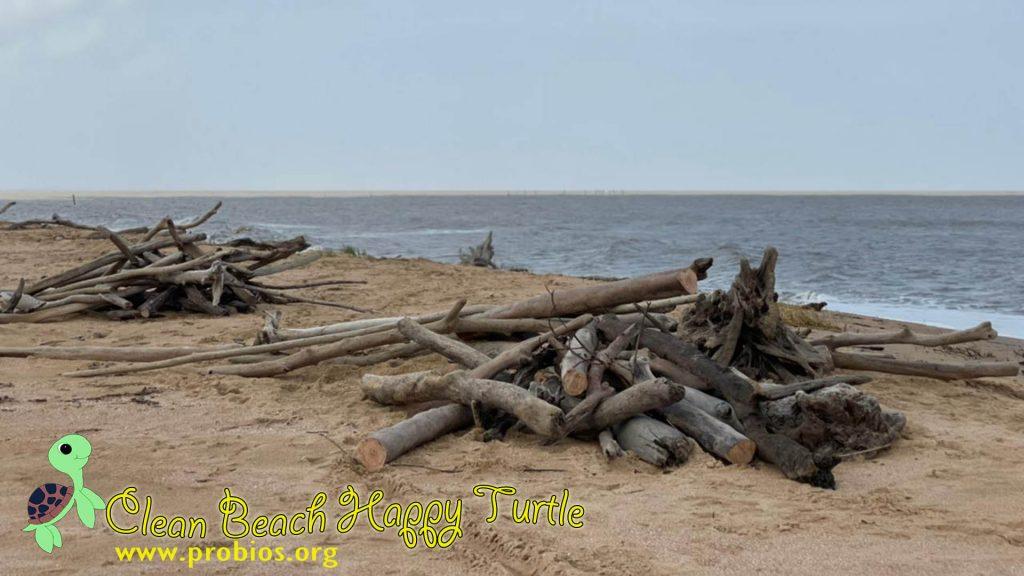5 hout schoonmaken (3)