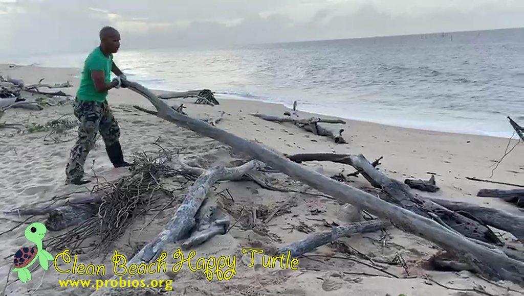5 hout schoonmaken (6)