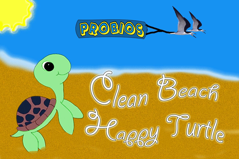 Clean Beach Happy Turtle